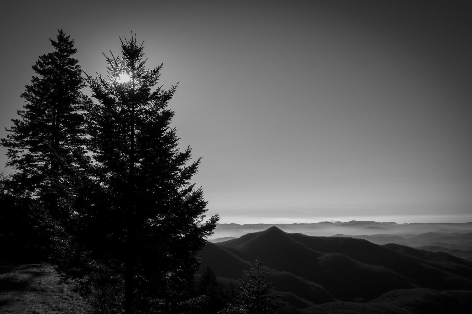 Early Morning, Blue Ridge Parkway NC